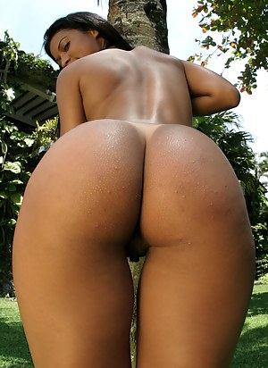 Free Perfect Ass Porn Pictures