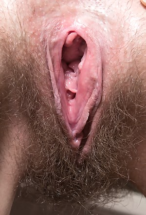Free Open Pussy Porn Pictures